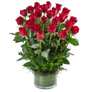 Red Desire 228 Long stem Red Roses