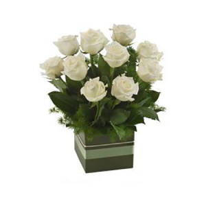 White Rose Box 501