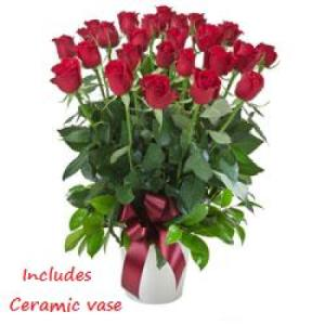 Impulse 256- 24 red roses in ceramic vase