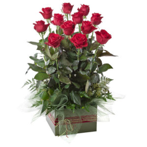 Red Roses Boxed upright 216