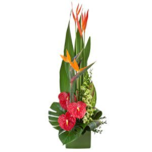 Large Tropical arrangement Tropicana 288