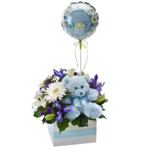 Its A Boy 315 Flower box with teddy and Balloon