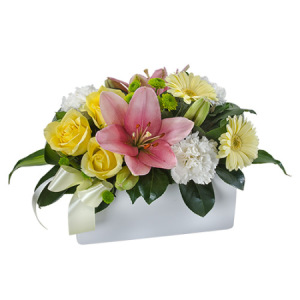 Harper- WS225 Bright Arrangement in a Ceramic Container
