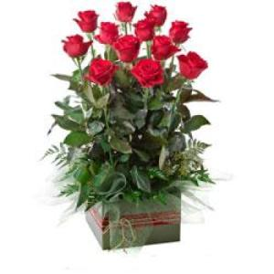 Now & Forever 216- 1 dozen long stem red roses upright box