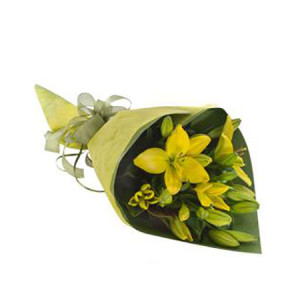 Abby WS133 Yellow Tiger Lily wrap