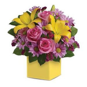 Serenade A36 Bright box arrangement