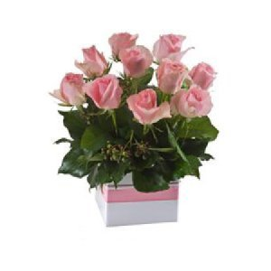 Short pink roses in box 502