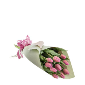 Kate Wrapped Pink Tulips M162