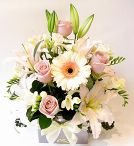 Pastel Posy Box of flowers