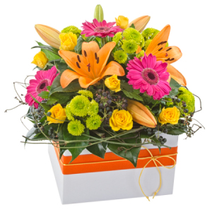 Fiesta 294 -Bright Mix box arrangement