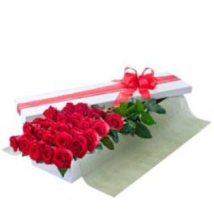 Seduction 204- 24 long stem red roses in presentation box