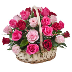 Caress 24 Pink and Red basket of roses 242